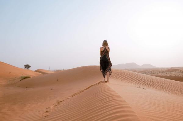 Desert animals and plants